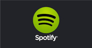 Bruk spotify på din android mini pc